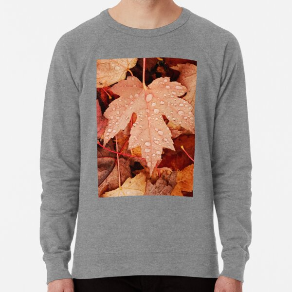Enchanting  Autumn arriving soon  by Yannis Lobaina Lightweight Sweatshirt