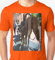 Horse and carriage e02 T-Shirt