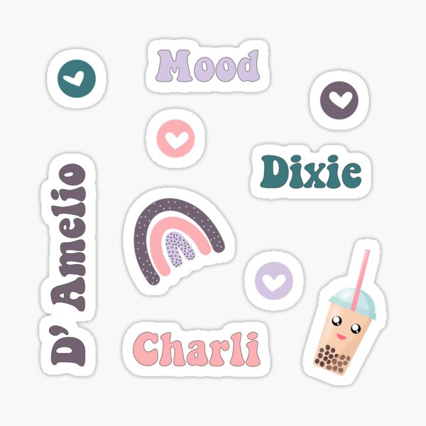 Pack d'autocollants de Charli et Dixie D 'Amelio, célèbres frères et sœurs tiktoker Sticker