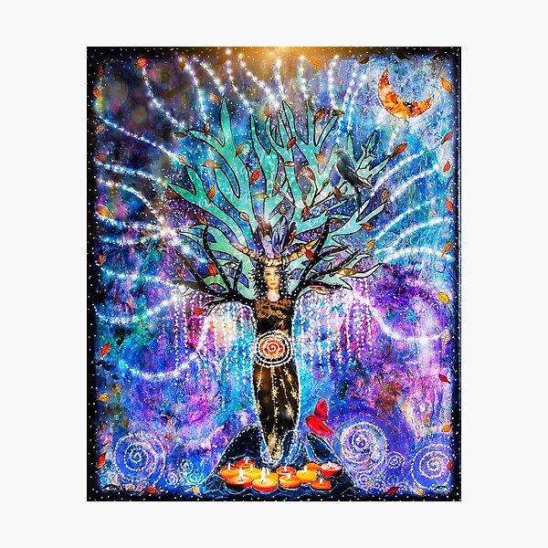 The goddess tree Photographic Print