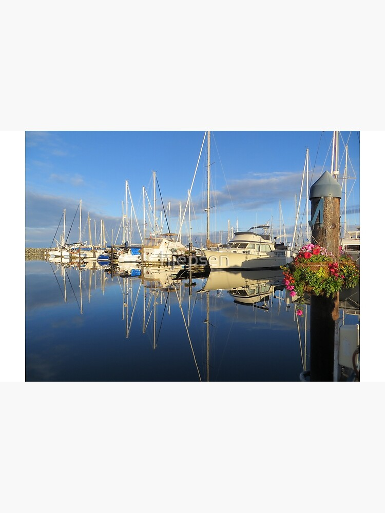 Beautiful and Colorful Yachts and Sailboats in a Marina by hjepsen