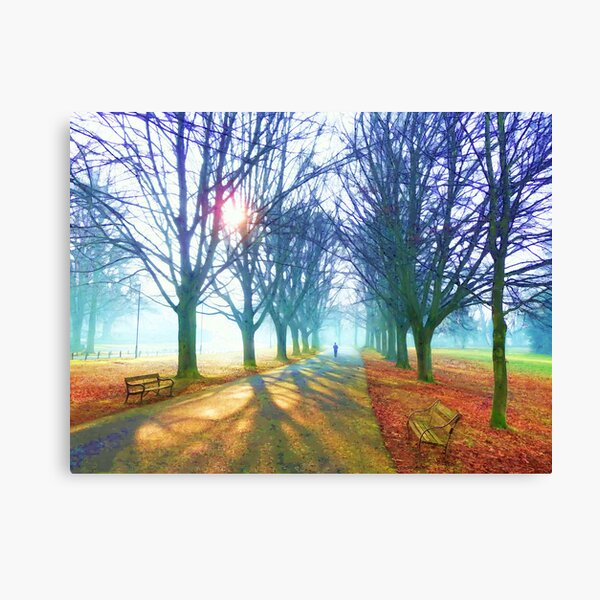 Winter Morning on Clifton Downs Canvas Print