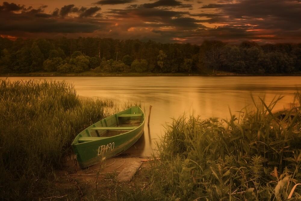 A boat in the river Nemunas by Geraldas Galinauskas