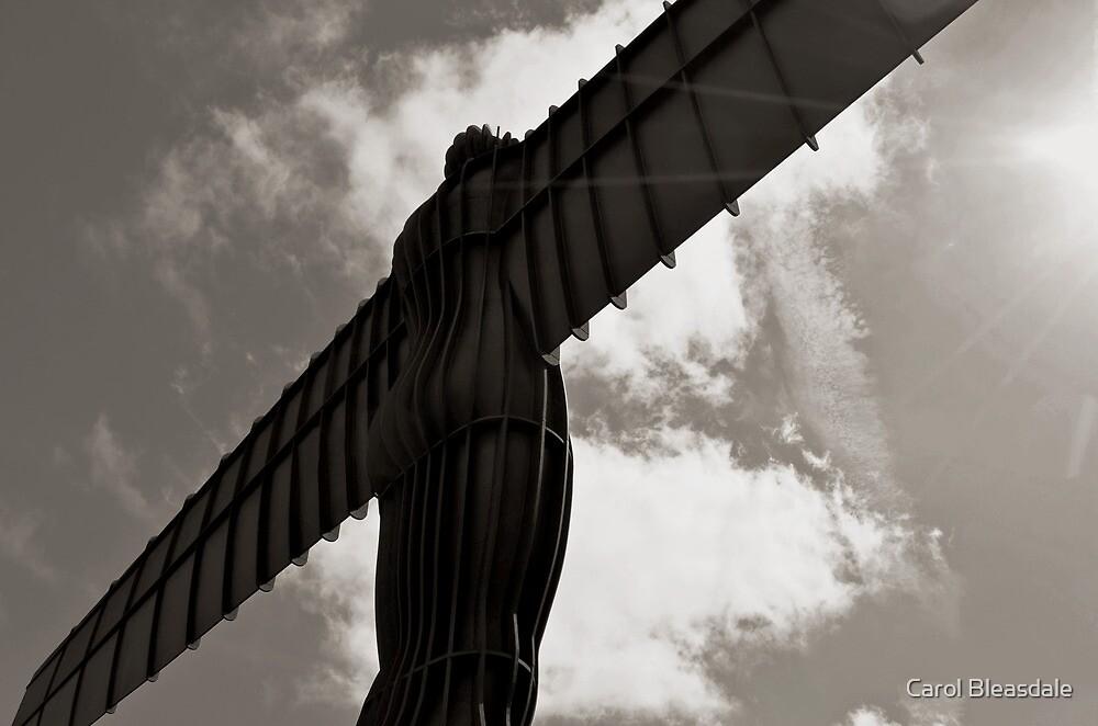 Angel in Mono by Carol Bleasdale