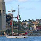 Sydney Harbour  by looneyatoms