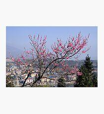 sapa city Photographic Print