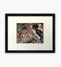 ©NS Reptile Pattern IIA Framed Print