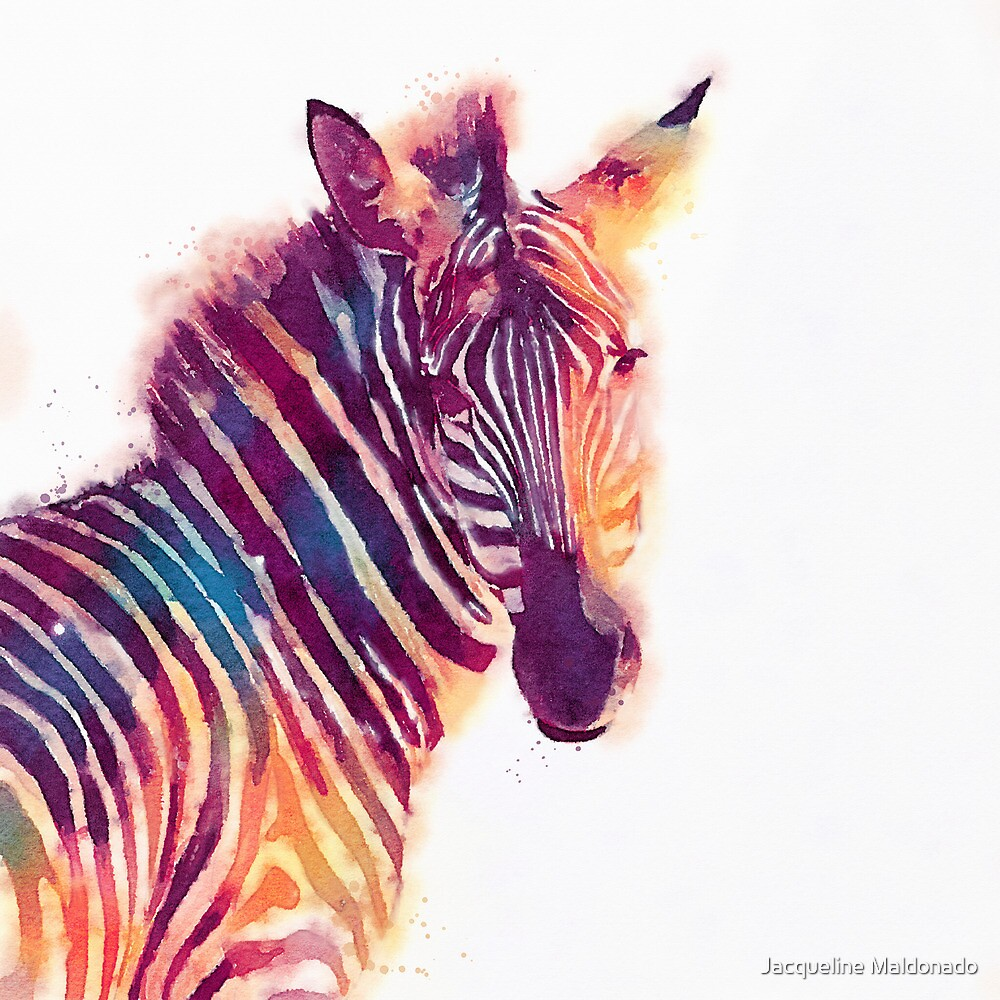 Quot The Aesthetic Watercolor Zebra Illustration Quot By