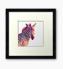 The Aesthetic - Watercolor Zebra Illustration Framed Print