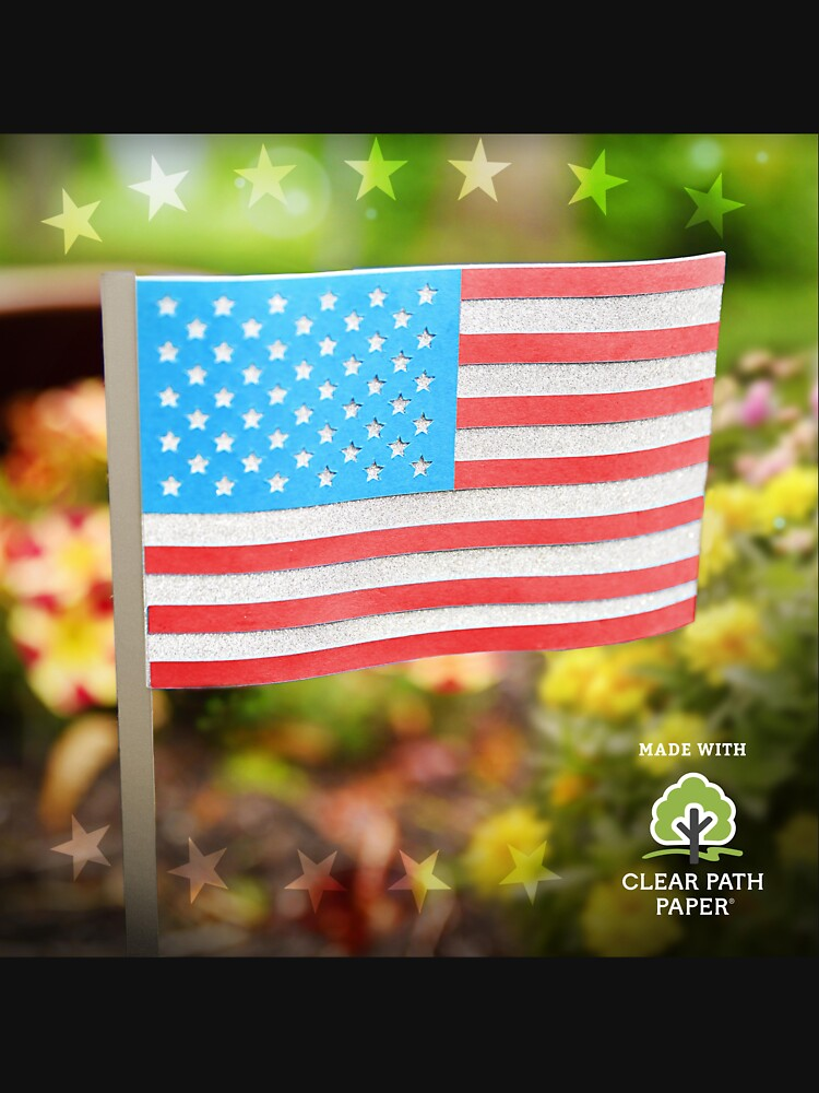 American Flag  by clearpathdesign