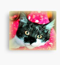 Holly Wood Canvas Print