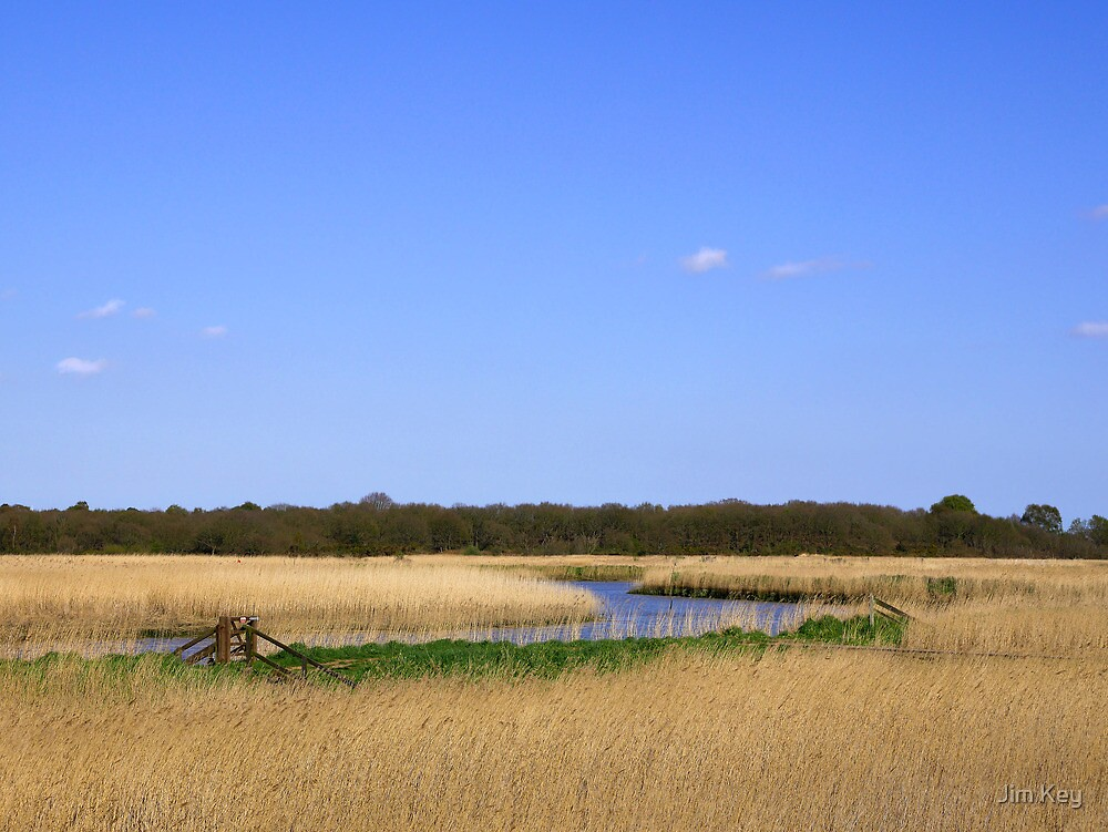 Snape Marshes  Suffolk  UK by Jim Key