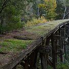 Historic Trestle Bridge In Country Victoria by djzontheball