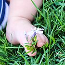 Baby Toes by LaurelMuldowney