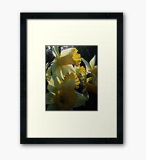 Hugged by the Sun Framed Print
