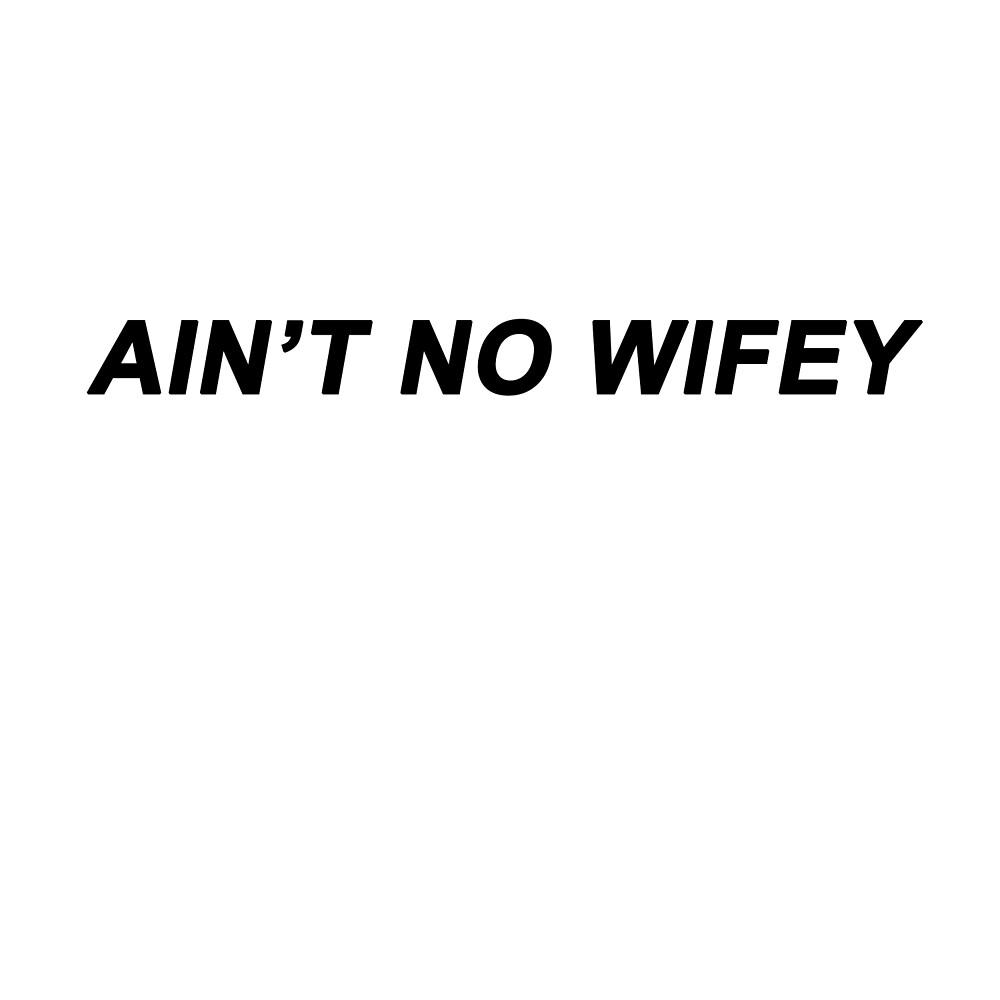AIN'T NO WIFEY by echorose