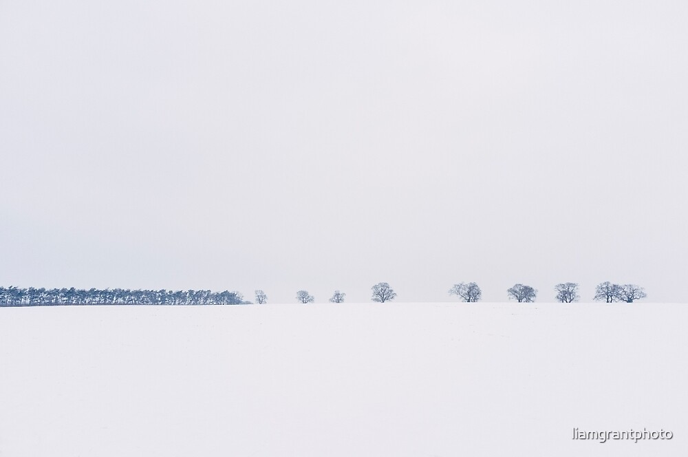 Trees on the horizon of a snow covered field. Norfolk, UK. by liamgrantphoto