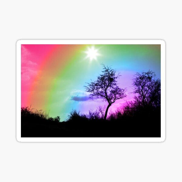 Silhouette tree sunset muticolor design Sticker
