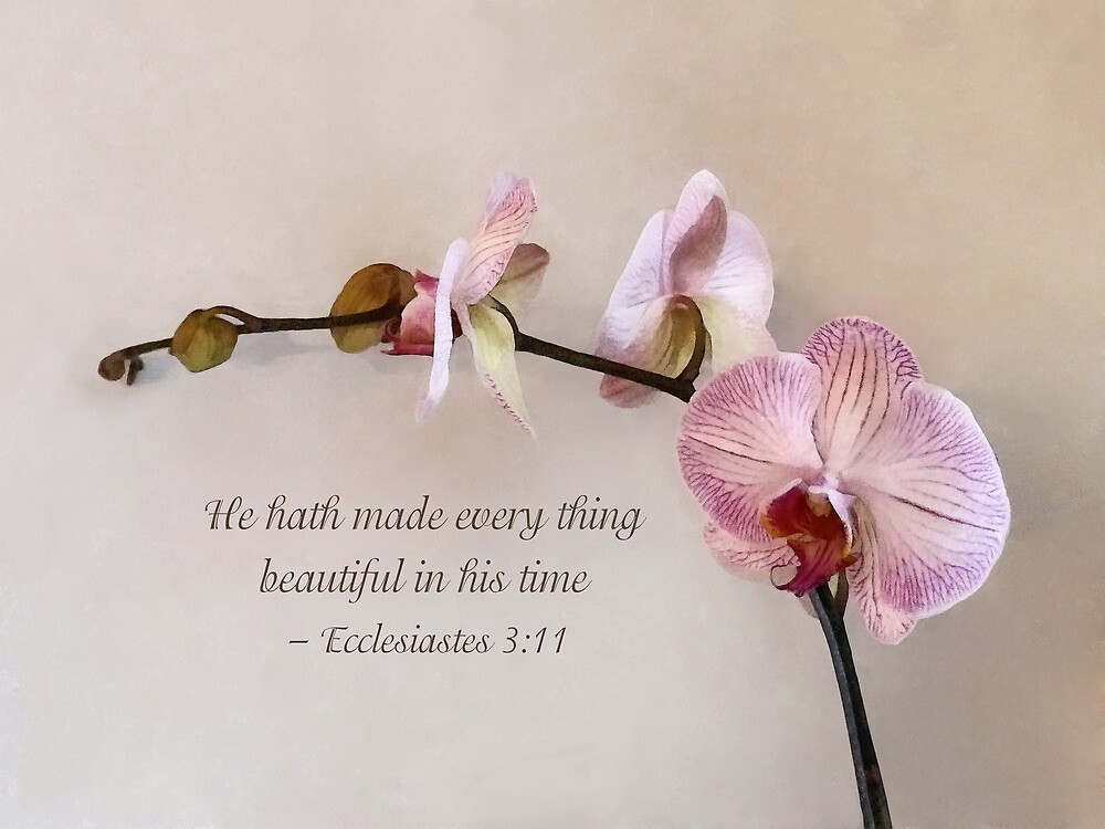 Ecclesiastes 3:11 He Hath Made Everything Beautiful by Susan Savad