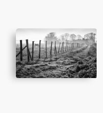 Equine Fence Canvas Print