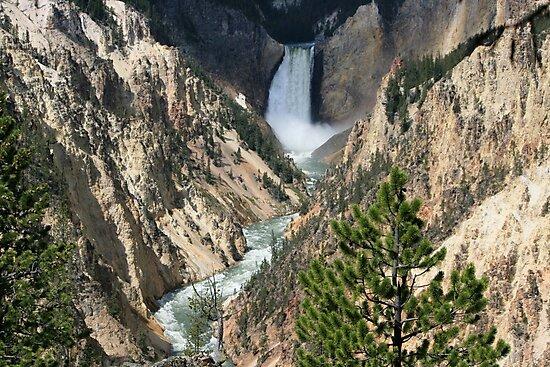 Falls by Hayley Bohn