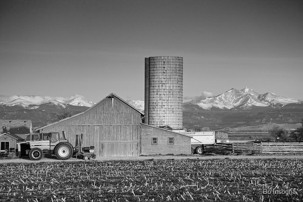 Colorado Farming in Black and White by Bo Insogna