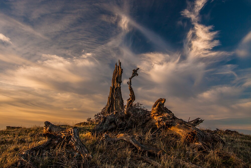 Cirrus Clouds at Sunset by marccrumpler