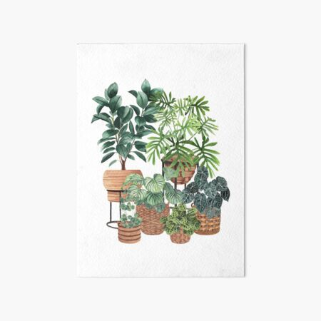 Potted Plants Collection 3 Art Board Print
