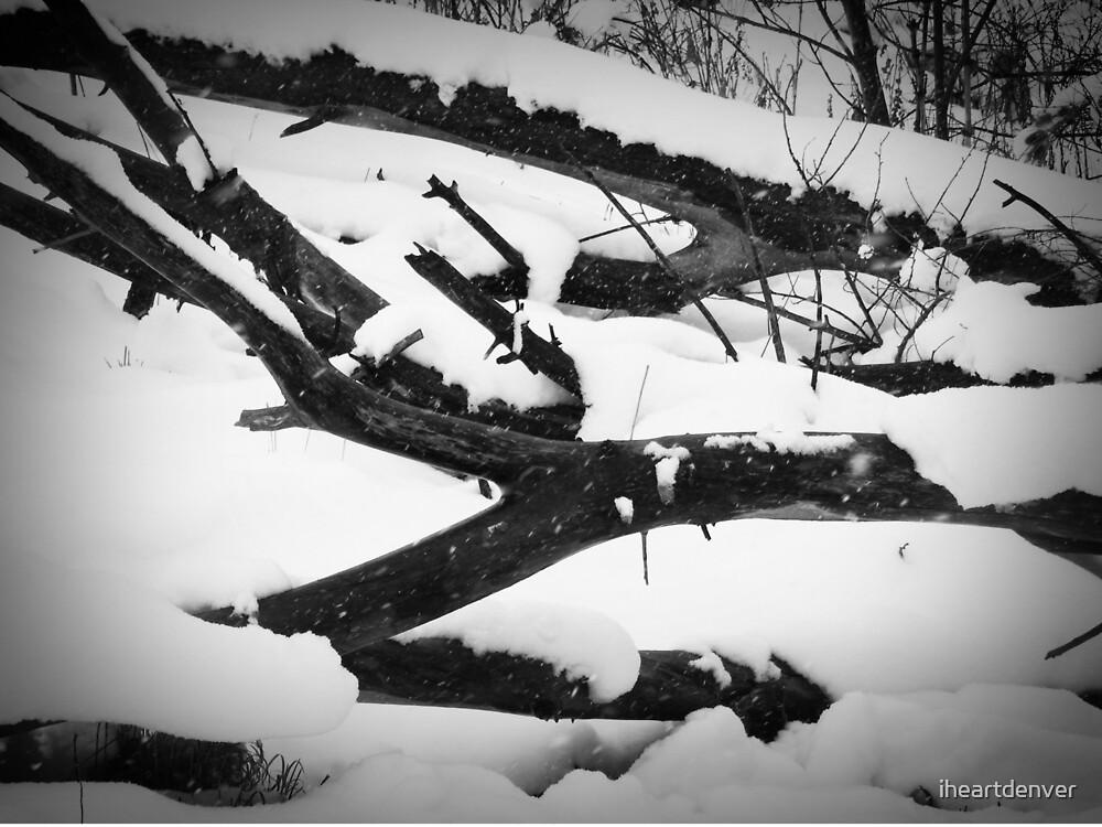 Winter Logs by iheartdenver