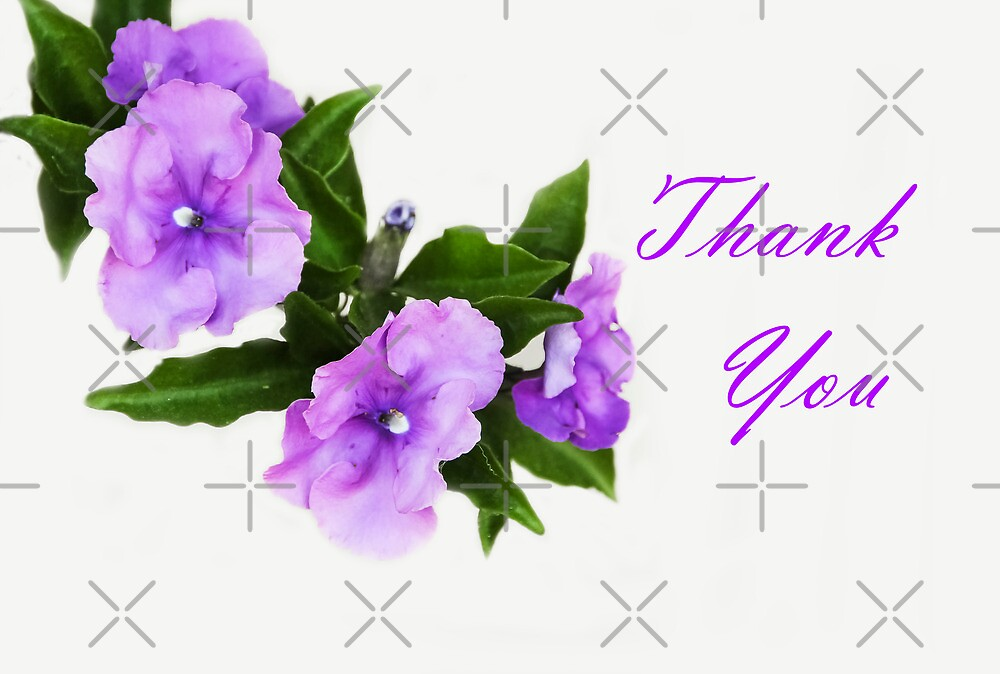 Thank You by Heather Friedman