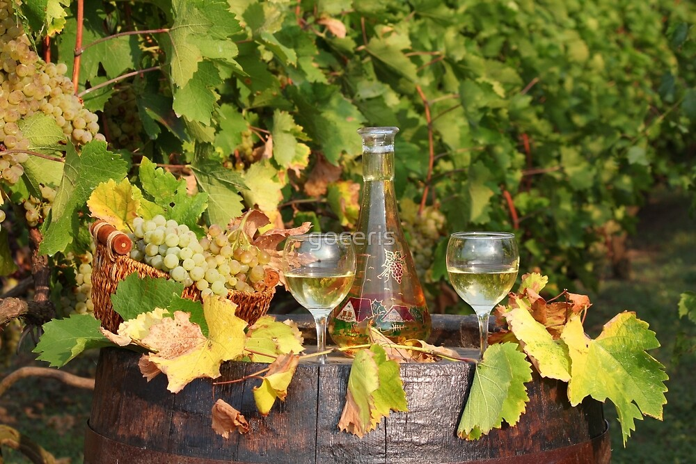 white wine autumn scene by goceris
