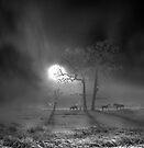 Silver Night by Igor Zenin