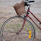 Byron Bicycle by Jenny Dean