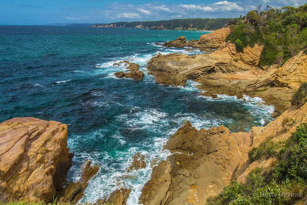 South of Bermagui. by Bette Devine