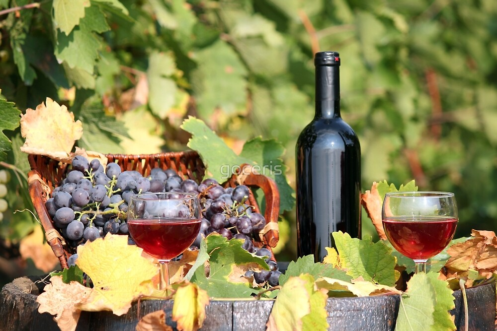 red wine by goceris