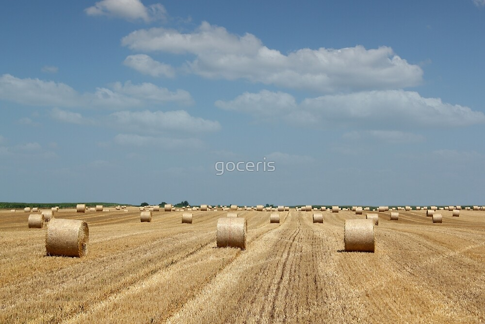 straw bale field by goceris