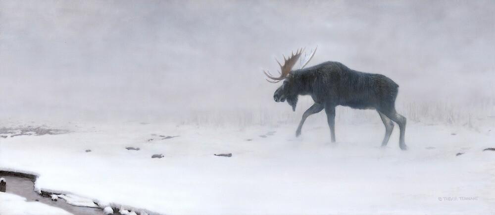 Algonquin Moose - Bull Moose by tennantart