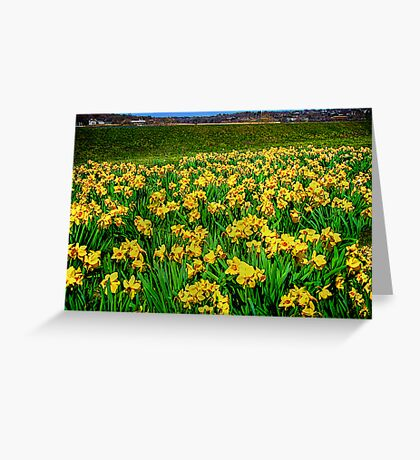 """Going """"Daffy"""" For Spring Greeting Card"""