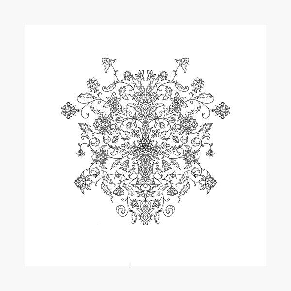 Shield Pattern Photographic Print