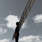 Angel of the North by Carol Bleasdale