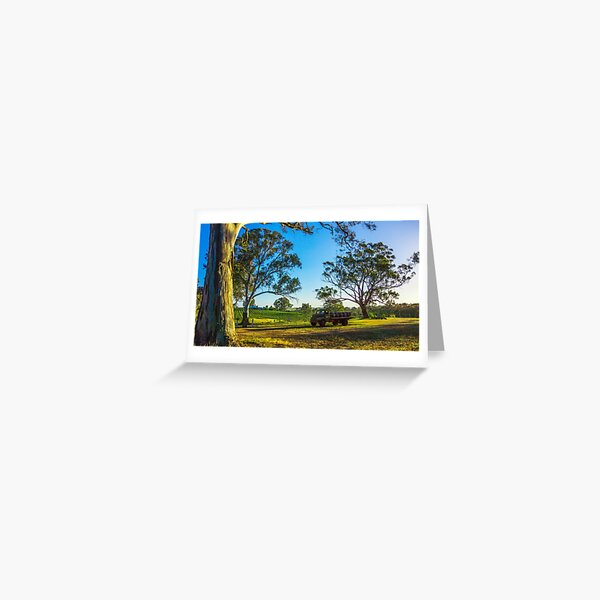 Bullock Creek Vineyard - Bendigo, Victoria Greeting Card