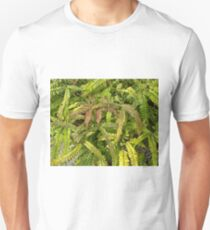 Tropical Fern - name unknown T-Shirt