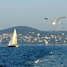 Boat to the Islands, Istanbul by Zoe Marlowe