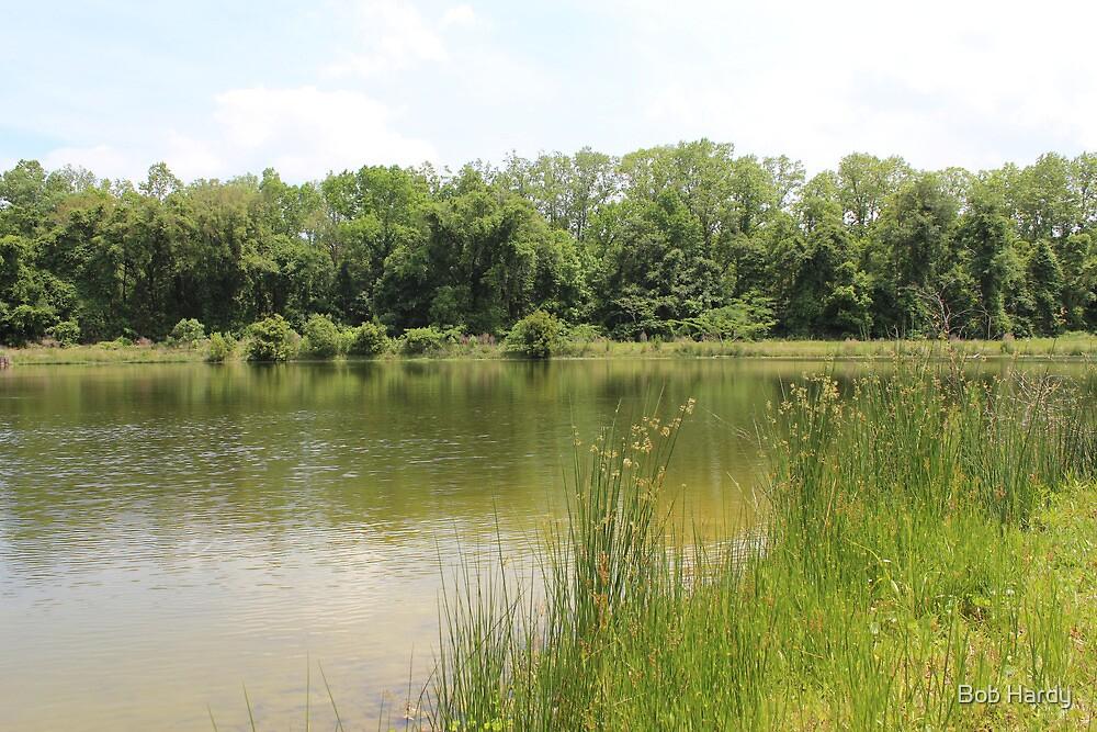 Lakeside Cane by Bob Hardy