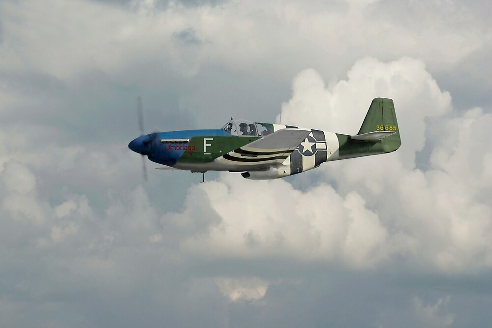 P51 Mustang Gallery - No1 by Pat Speirs