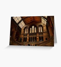 National History Museum II- London Greeting Card