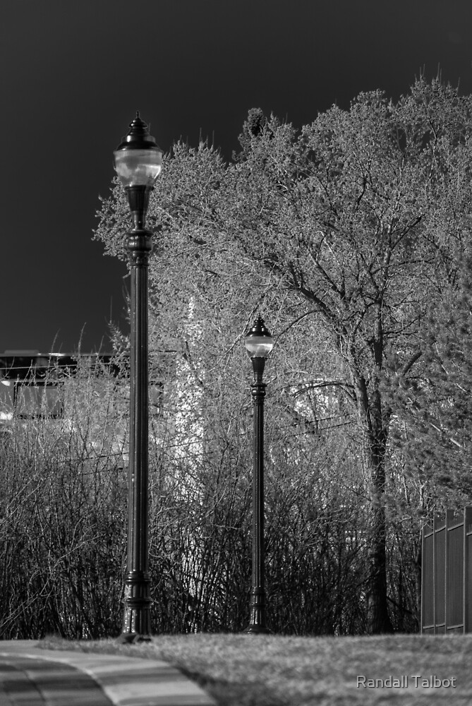 Lamp Posts by Randall Talbot