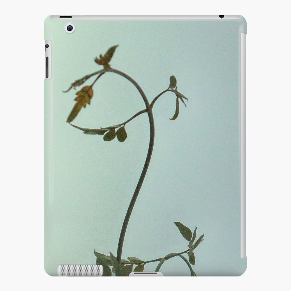 Gently left but pointed north I feel Space is actually that way iPad Case & Skin