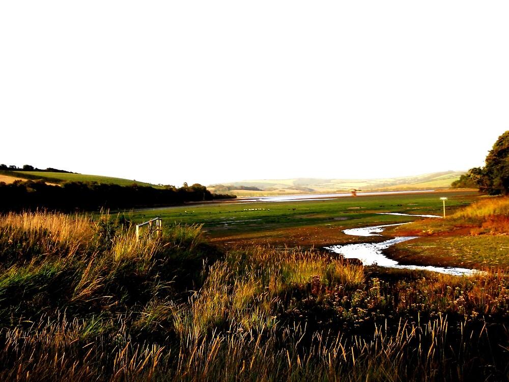 South Devon Landscape II by mugs-munny