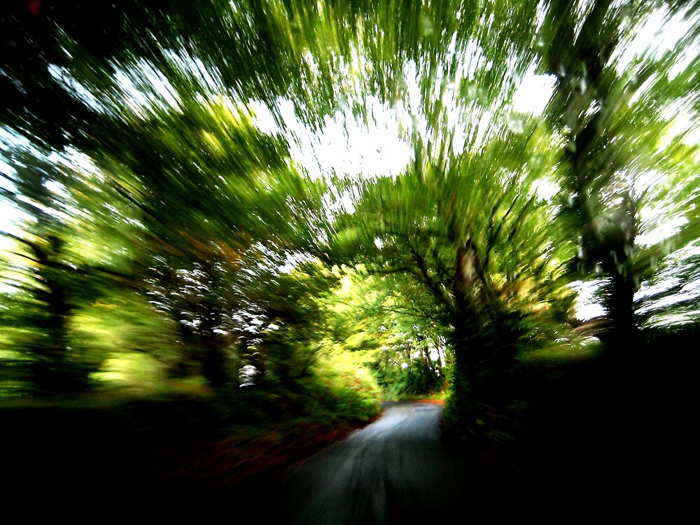 Blurry Forest (South Devon) by mugs-munny